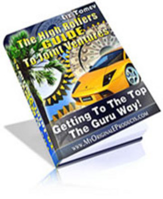 Product picture The High Rollers Guide To Joint Ventures
